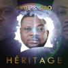 Yodé & Siro - Héritage illustration