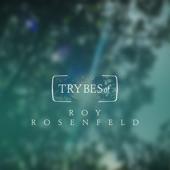 Roy Rosenfeld - The Biggest Heart