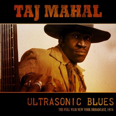 Ultrasonic Blues (Live 1974) - Taj Mahal