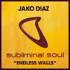 Endless Walls - Single