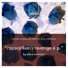 Rapscallion s Revenge Township Rebellion Remix - Dave Seaman mp3