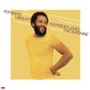 Roy Ayers Ubiquity - Everybody Loves the Sunshine  artwork