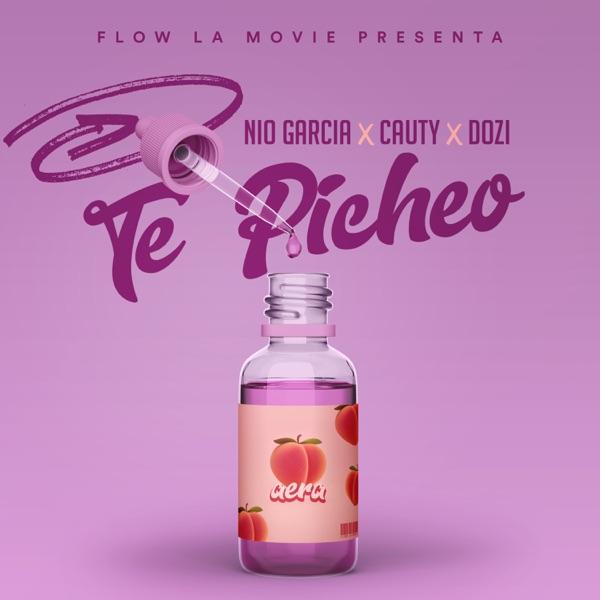Te Picheo - Single
