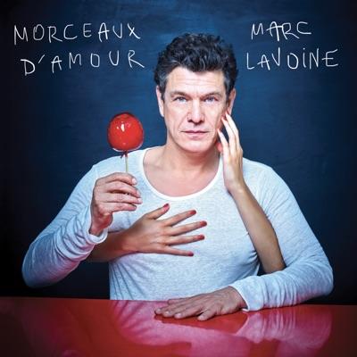 Marc Lavoine– Morceaux d'amour (3 CD)
