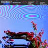 Friendly Fires - Inflorescent artwork