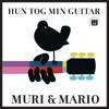 Muri & Mario - Hun Tog Min Guitar (S.W.A.G. Remix) artwork