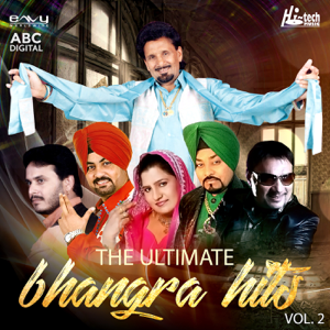 Various Artists - The Ultimate Bhangra Hits Vol. 2