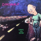 Dinosaur Jr. - Not the Same