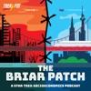 The Briar Patch: A Star Trek Socioeconomics Podcast