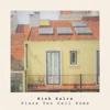 Rish Kalra - Place You Call Home artwork