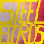 Slow Pulp - Steel Birds