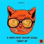 Turnt Up (feat. Snoop Dogg) artwork