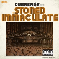 The Stoned Immaculate (Deluxe Version)