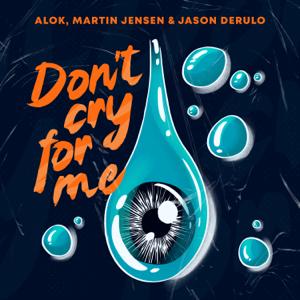 Alok, Martin Jensen & Jason Derulo - Don't Cry For Me