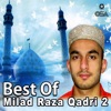 Best of Milad Raza Qadri Vol 2