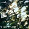 A Walk in the Woods - Single