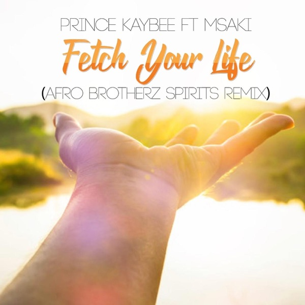 Fetch Your Life (feat. Msaki) [Afro Brotherz Spirits Remix] - Single
