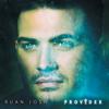 Ruan Josh - Provider artwork