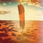 Follow the Sun - Xavier Rudd - Xavier Rudd