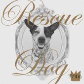 [Download] Rescue Dog MP3