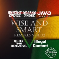 Wise & Smart (Run the Breaks rmx) - BAYMONT BROSS - DARK ANGEL - JAVO SCRATCH