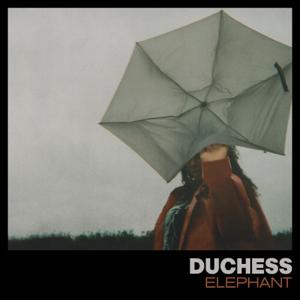 Duchess - Elephant