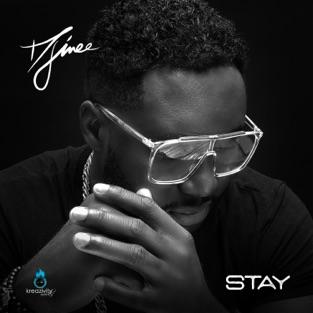 Djinee – Stay – Single [iTunes Plus AAC M4A]