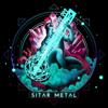Sitar Metal - Sitar Metal
