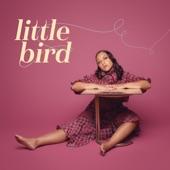 Little Bird - Single