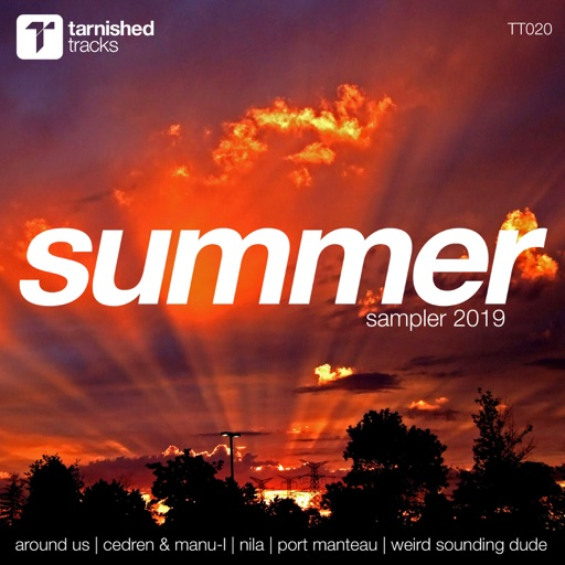 Summer Sampler 2019 by Various Artists