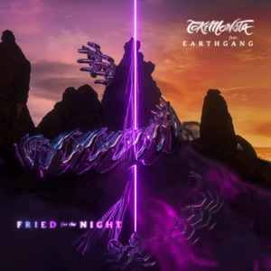 TOKiMONSTA - Fried for the Night feat. EARTHGANG