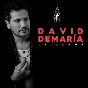 David DeMaría - La llama