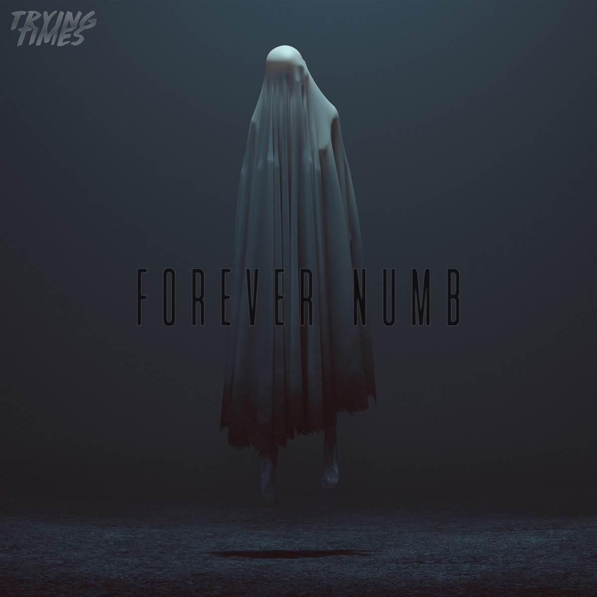 Forever Numb - Single Trying Times CD cover