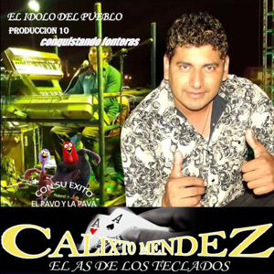 Calixto Mendez El As De Los Teclados - El Pavo y la Pava