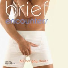 Brief Encounters: 69 Hot Gay Shorts (Unabridged)