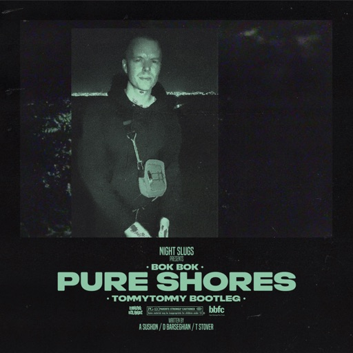 Pure Shores - Single (TommyTommy Bootleg) - Single by Bok Bok