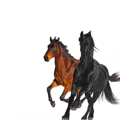 Lil Nas X / Billy Ray Cyrus - Old Town Road (Edit)