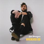Up Again - Dan Bremnes - Dan Bremnes