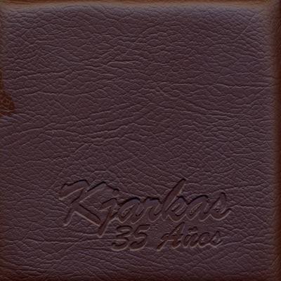 35 Años - Los Kjarkas