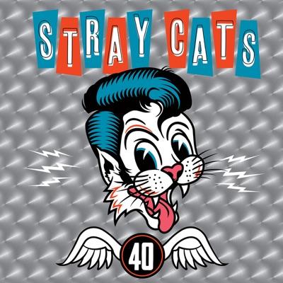 40 - Stray Cats