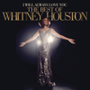Whitney Houston - One Moment in Time artwork
