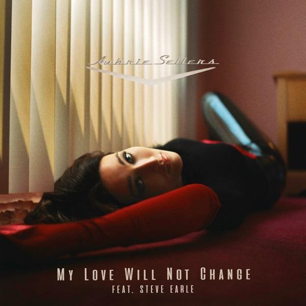 My Love Will Not Change (feat. Steve Earle) - Single