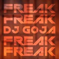 Freak! (Record Mix) - DJ GOJA