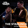 The Starlings - Little Submarine (Live Uit Liefde Voor Muziek) artwork