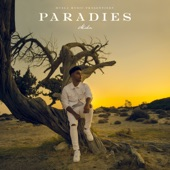 Paradies artwork