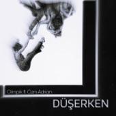 Düşerken (feat. Cem Adrian) artwork