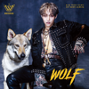 WooSung - WOLF - EP  artwork