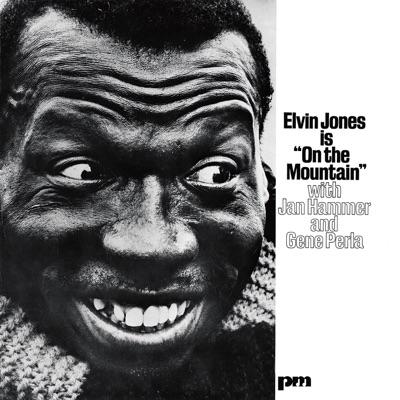 On the Mountain (Remaster) - Elvin Jones