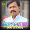 Shahid Iqbal Malangi - Tasveeran artwork