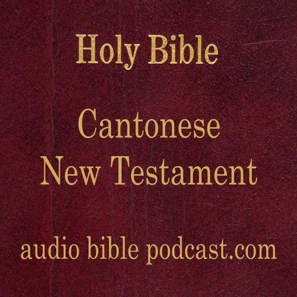 ABP - Cantonese Bible - New Testament - January Start